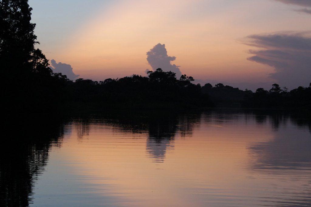 ป่าอเมซอน